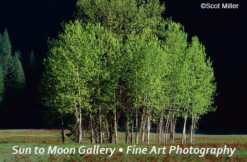 Charles Cramer fine photogaphic print, available at Sun to Moon Gallery