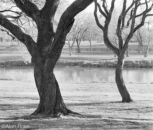 "ALan Ross ""River Oaks, LBJ Ranch"" fine print, at Sun to Moon Gallery, Dallas, TX"