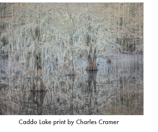 Caddo Lake fine print by Charles Cramer, at Sun to Moon Gallery