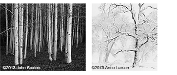 We have a nice selection of Gelatin Silver Prints by John Sexton and Anne Larsen at Sun to Moon Gallery, Dallas, TX