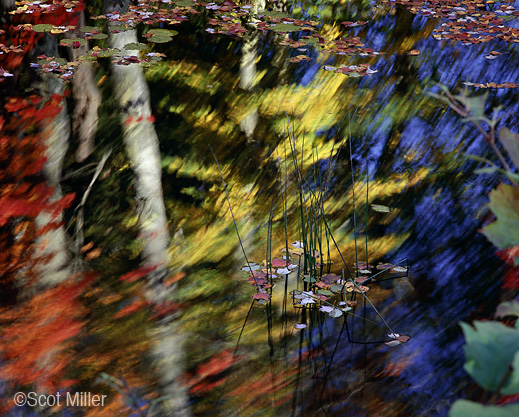 Archival Pigment Print by Scot Miller, at Sun to Moon Gallery