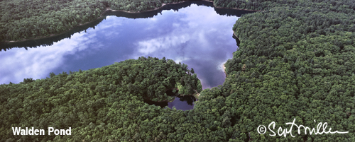 Walden Pond aerial photograph By Scot Miller