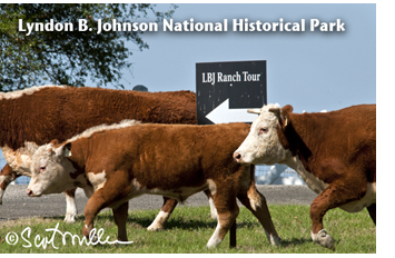 LBJ Ranch photo by Scot Miller, Sun to Moon Gallery
